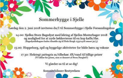 Sommerhygge 2. juni i Sjelle
